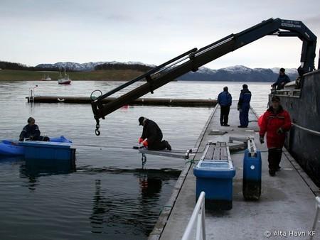 Demontering av Talvik Marina