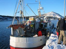 2009-02_møljekalas-på-kaia-2