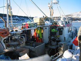 2009-02_møljekalas-på-kaia-4